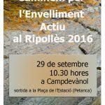 cartell-a3-marxa-envelliment_campdevanol-2