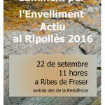 cartell-a3-marxa-envelliment_ribes-2